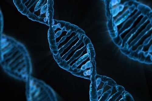 test genetici salivari